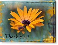 Acrylic Print featuring the photograph Sunny Thank You  by Jean OKeeffe Macro Abundance Art