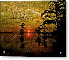 Sunrise And Cypress Abstract Acrylic Print by J Larry Walker