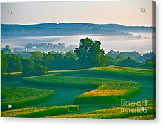 Sunrise And Morning Fog Acrylic Print