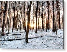Sunrise Acrylic Print by Andrea Galiffi