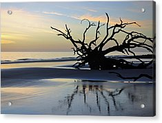 Sunrise At Driftwood Beach 6.6 Acrylic Print