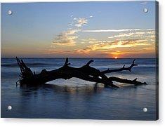 Sunrise At Driftwood Beach 7.2 Acrylic Print
