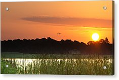 Sunrise At Lakewood Ranch Florida Acrylic Print