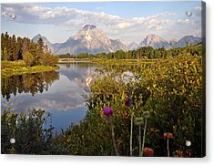 Sunrise At Oxbow Bend 5 Acrylic Print by Marty Koch