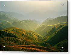 Sunrise At Terrace In Guangxi China 3 Acrylic Print by Afrison Ma