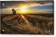 Sunrise At The Wildlife Refuge Acrylic Print by David Soldano