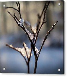 Acrylic Print featuring the photograph Sunrise Crystals by Glenn DiPaola