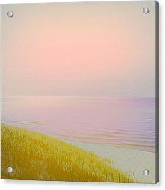 Sunrise Dune Acrylic Print by Michelle Calkins