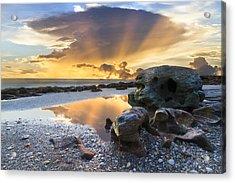 Sunrise Explosion Acrylic Print by Debra and Dave Vanderlaan