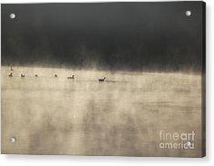 Sunrise Geese Acrylic Print by Melissa Petrey