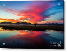 Sunrise Glory Acrylic Print