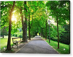 Sunrise In A Green Park Acrylic Print by Borchee