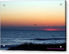 Sunrise In Florida Acrylic Print