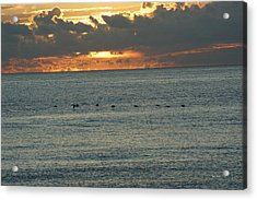 Acrylic Print featuring the photograph Sunrise In Florida Riviera by Rafael Salazar