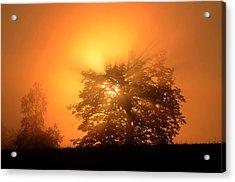 Sunrise In Fog Acrylic Print