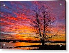 Sunrise In The Sacramento Valley Acrylic Print