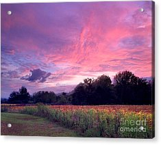 Sunrise In The South Acrylic Print