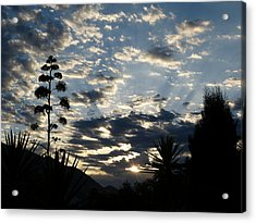 Acrylic Print featuring the photograph Sunrise by Janina  Suuronen