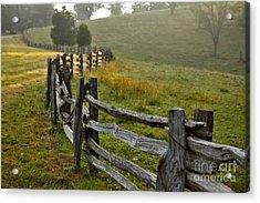 Sunrise Meadow - Blue Ridge Parkway I Acrylic Print by Dan Carmichael
