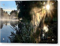 Sunrise Mist At A Marsh Acrylic Print