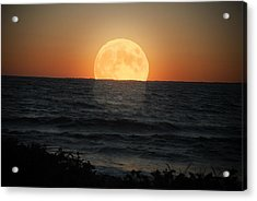 Sunrise Moon Acrylic Print by Tammy Collins