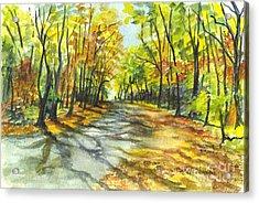 Sunrise On A Shady Autumn Lane Acrylic Print by Carol Wisniewski
