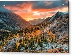 Sunrise On The Larches Acrylic Print by Brian Bonham