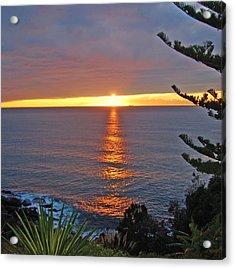 Acrylic Print featuring the photograph Sunrise Opening by Ankya Klay