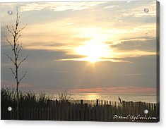 Sunrise Over Beach Dune Acrylic Print by Robert Banach