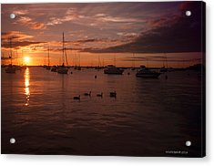 Sunrise Over Lake Michigan Acrylic Print by Miguel Winterpacht