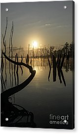 Sunrise Over Manasquan Reservoir II Acrylic Print