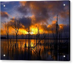 Acrylic Print featuring the photograph Sunrise by Raymond Salani III