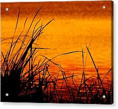 Acrylic Print featuring the photograph Sunrise Reflected On The Pond by Bill Kesler