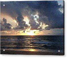 Sunrise Seagulls Acrylic Print