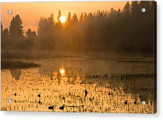 Acrylic Print featuring the photograph Sunrise Take Off by Judi Baker