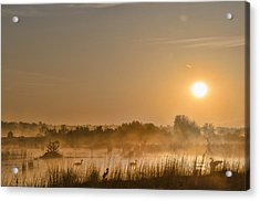 Sunrise With The Geese Acrylic Print