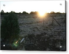 Acrylic Print featuring the photograph Sunrize by David S Reynolds