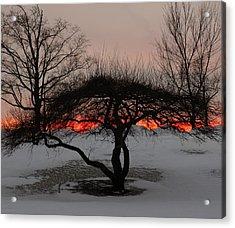 Sunroof Acrylic Print
