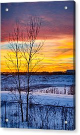 Sunset 1-3-14 Northern Illinois 002  Acrylic Print by Michael  Bennett