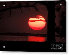 Sunset 3 Acrylic Print by Stephanie Kendall