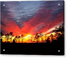 Sunset 5 Acrylic Print by Stephanie Kendall