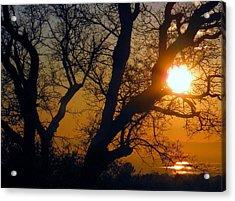 Sunset Above Rice Fields Acrylic Print by Debra Madonna
