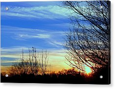Acrylic Print featuring the photograph Sunset And 3 Birds by Rima Biswas