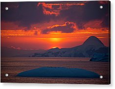 Sunset At 11pm In Antarctica Acrylic Print by Peter Menzel