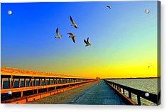 Sunset At Copano Bay Bridge Acrylic Print by Antonia Citrino