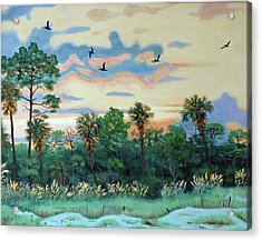 Acrylic Print featuring the painting Sunset At Hunting Island by Dwain Ray