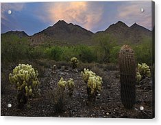 Sunset At Mcdowell Mountains In Scottsdale Az Usa Acrylic Print