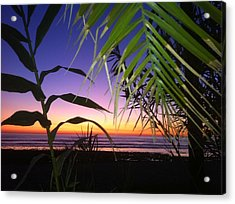 Sunset At Sano Onofre Acrylic Print