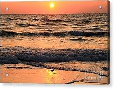 Sunset At St. Joseph Acrylic Print by Adam Jewell