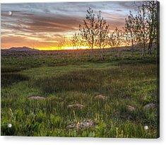 Sunset At Sunflower Flats Acrylic Print